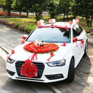 Audi and mercedes cars for wedding