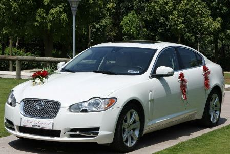 Jaguar Car For Wedding, Jaguar XF Rental Service Chandigarh, wedding jaguar xjl